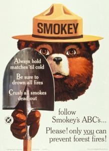 Smokey Bear Ad Campaign